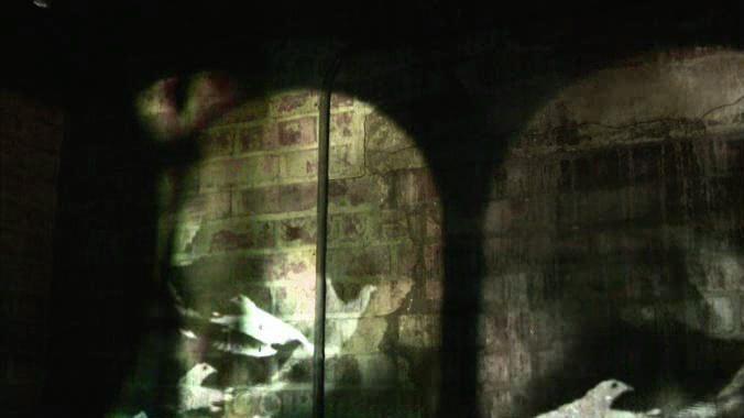 ds11_ananthology-film_00004